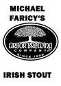 Arbor Brewing Michael Faricy's irish Stout